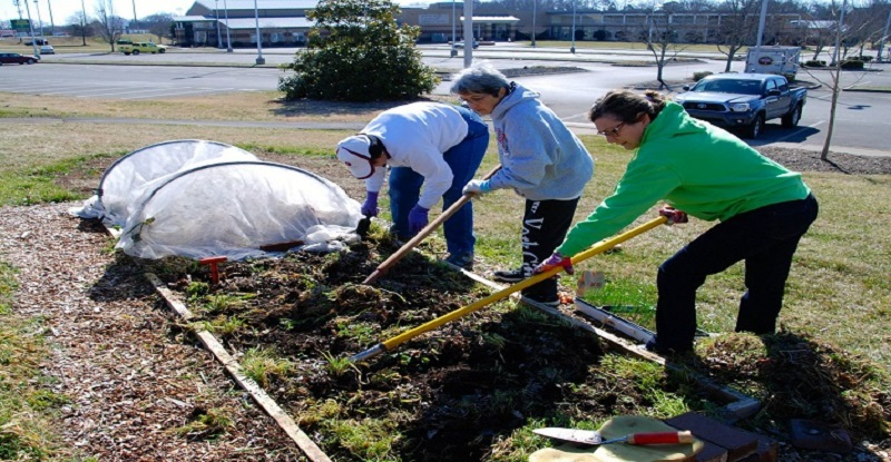 Master Gardeners At Charity Gardens